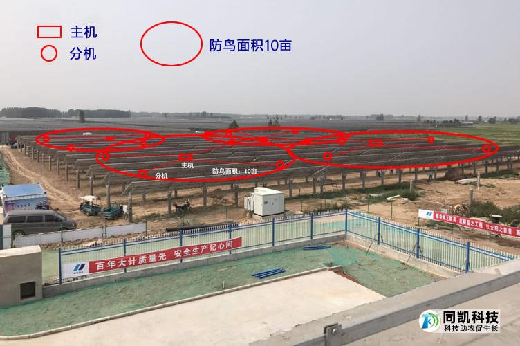 台前县侯庙镇光伏电站示意图